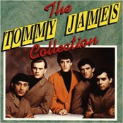 Tommy James: The Tommy James Collection