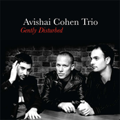 Avishai Cohen Trio: Gently Disturbed