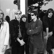 The Velvet Underground 2f9ed117d1d4434b8c192bfd2fbc22b0
