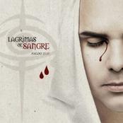Lagrimas De Sangre