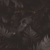 Old Salt Union: Where The Dogs Don't Bite