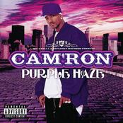 Cam'ron: Purple Haze