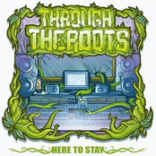 Through The Roots: Here to Stay
