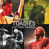 Best of Toadies Live From Paradise
