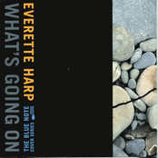 Everette Harp: What's Going On
