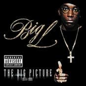 The Big Picture (Explicit Version)