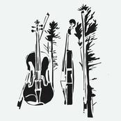 The Wilds Quartets
