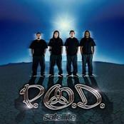 P.O.D.: Satellite (U.S. Version Wea Distribution)