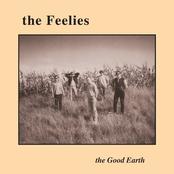 The Feelies: The Good Earth