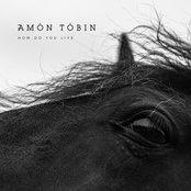 Amon Tobin - How Do You Live Artwork