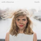 Aoife O'Donovan: Fossils