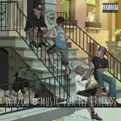 Skyzoo: Music for my friends