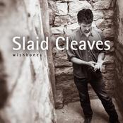 Slaid Cleaves: Wishbones