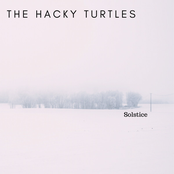 The Hacky Turtles: Solstice