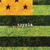 The Bottle Rockets: Zoysia