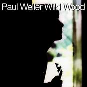 Paul Weller: Wild Wood
