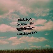 Wallows: Drunk on Halloween