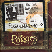 Just Look Them Straight In The Eye And Say... Pogue Mahone!!