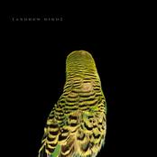 Andrew Bird: Armchair Apocrypha