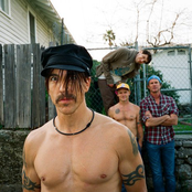 Red Hot Chili Peppers 341ed244ba76428b8a1559a31802f707