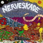 Perdition / Nerveskade Split EP