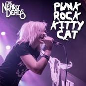 Punk Rock Kitty Cat