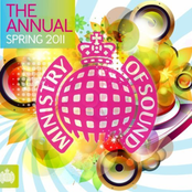 Ministry of Sound: The Annual Spring 2011