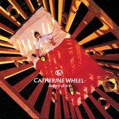 Catherine Wheel ~ Happy Days