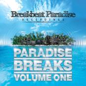 Paradise Breaks Volume One