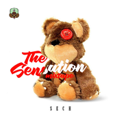 The Sensation Mixtape