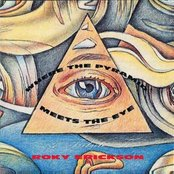 Thin White Rope - Where the Pyramid Meets the Eye: A Tribute to Roky Erickson Artwork