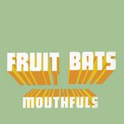 Fruit Bats: Mouthfuls