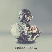 Alina Baraz: Urban Flora EP