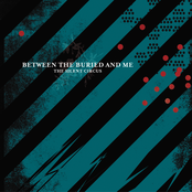 Between The Buried and Me: The Silent Circus