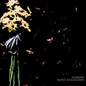 Cursive: Burst and Bloom