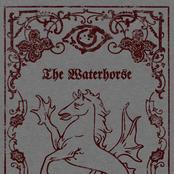 The Waterhorse
