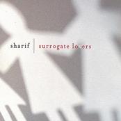 Surrogate Lovers