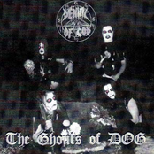 The Ghouls of D.O.G.