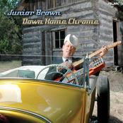 Junior Brown: Down Home Chrome