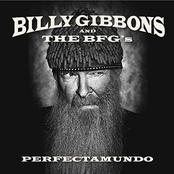 Billy Gibbons: Perfectamundo