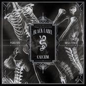 Calcium: Mega Punch