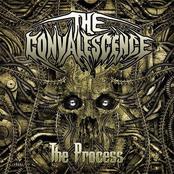 The Convalescence: The Process