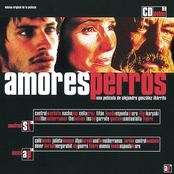 Gustavo Santaolalla: Amores Perros