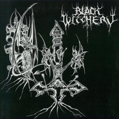 Black Witchery / Katharsis split 7