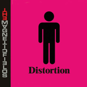 The Magnetic Fields: Distortion
