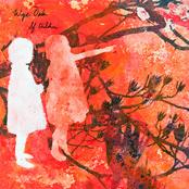 Wye Oak: If Children