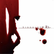 RH- Blood Bag