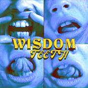 wisdom teeth - Single