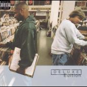 Endtroducing... [Deluxe Edition] Disc 1