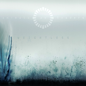 Animals As Leaders: Weightless
